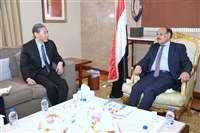 Vice President calls for international pressures on Houthis