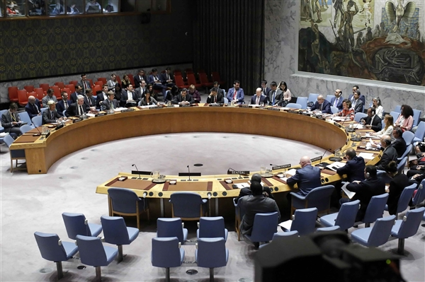 UNSC members call Houthis for positively engage in peace efforts