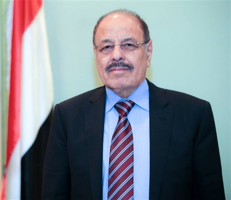 Vice President calls for decisive international positions for deterring the Houthis